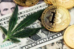 Après le Bitcoin, c'est au tour du cannabis d'enflammer les marchés