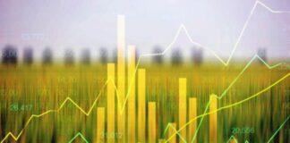 Les matières premières agricoles en rebond pendant la crise sanitaire