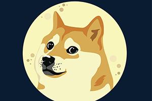 Le dogecoin, la crypto-monnaie à l'effigie d'un célèbre mème d'Internet